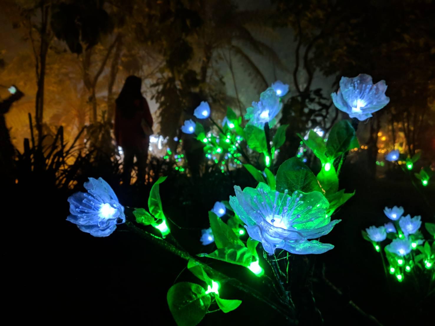 Lampion berbentuk mawar, jauh lebih cantik daripada bunga yang sesungguhnya. (Foto: Taufiq/Ekonomika)